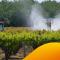 Pesticides : nous sommes face à un manque de données concrètes