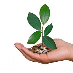 Publication du rapport finance verte et climat
