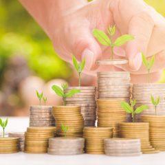 Amundi et Banque mondiale : un fonds d'obligations vertes créé au profit des pays émergents