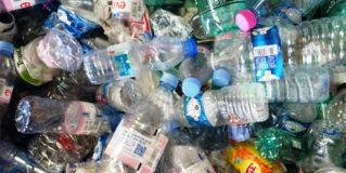 Les bouteilles en plastique à usage unique, un véritable fléau pour l'environnement