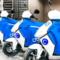 Cityscoot lance ses scooters électriques en libre-service à Charenton