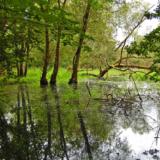 Découvrez les tarifs des redevances des agences de l'eau