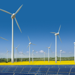 La transition écologique, une créatrice d'emplois ?