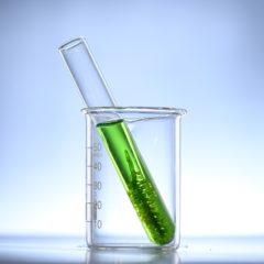 L'adoption des matériaux biosourcés par les industriels