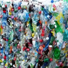 Sealed Air privilégie le recyclage chimique