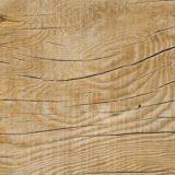 Un projet de plus de 82 M€ en Outaouais pour l'usage de la fibre de bois dans des cosmétiques et des aliments