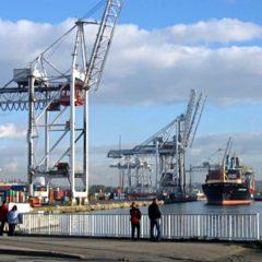 Le terminal multivrac du port du Havre relancé en 2021