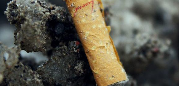 Isolant dans la construction – Le mégot de cigarette peut être une solution